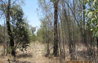 Picture of 284/LOT 105 WINFIELD ROAD, Tara QLD 4421