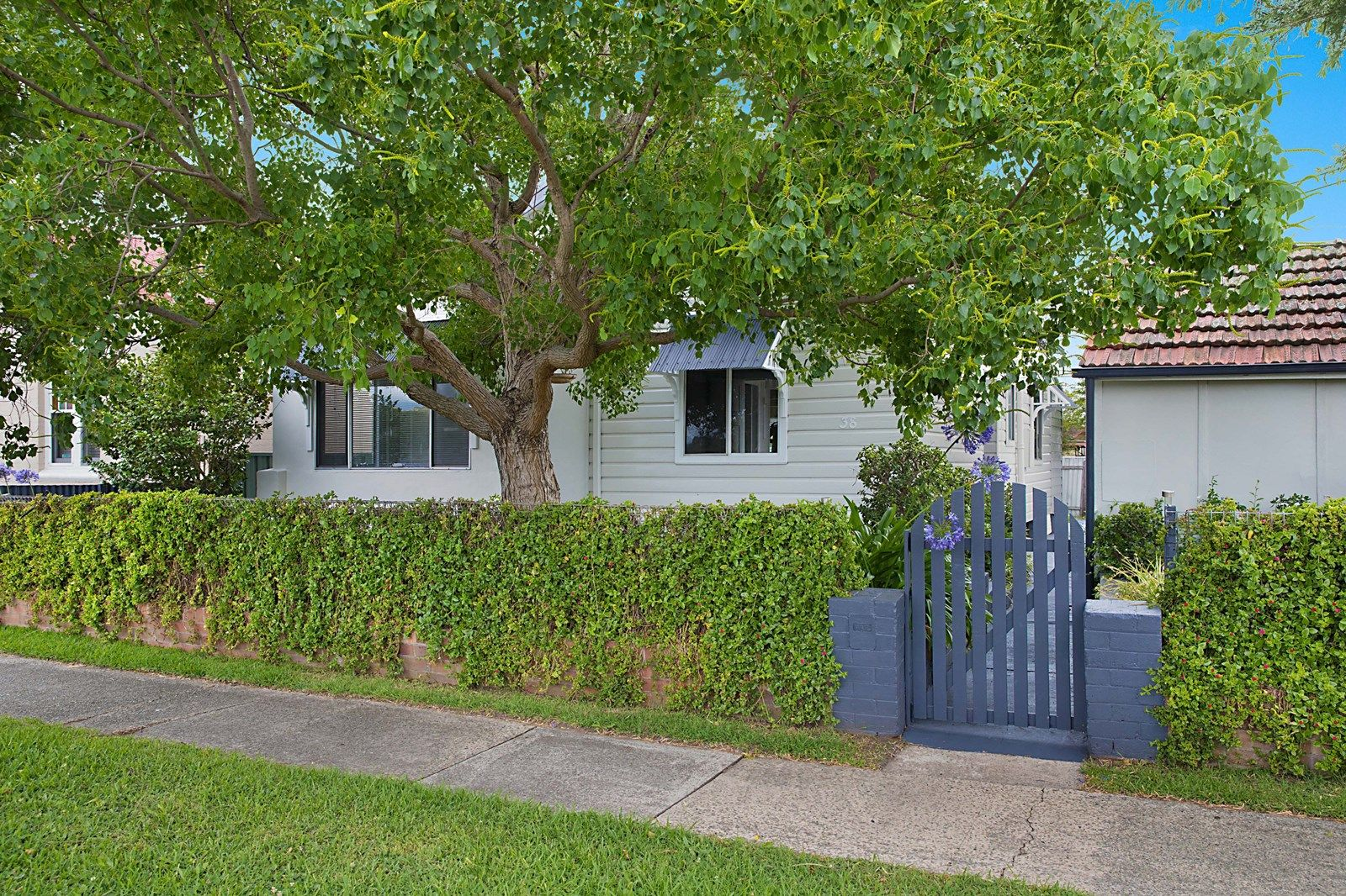38 Upfold Street, Mayfield NSW 2304, Image 1