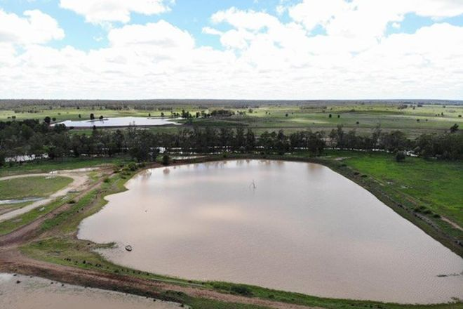 Picture of 2242 ACRES GRAZING & IRRIGATION OPPORTUNITY, DULACCA QLD 4425