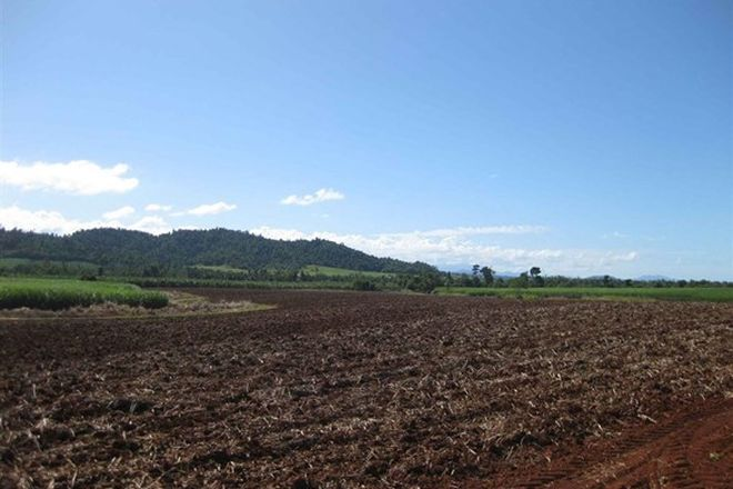 Picture of 2098 Innisfail-Japoon Road, BOMBEETA QLD 4871