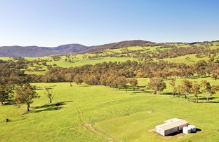 Picture of 394 Mount Olive Road, Oberon NSW 2787