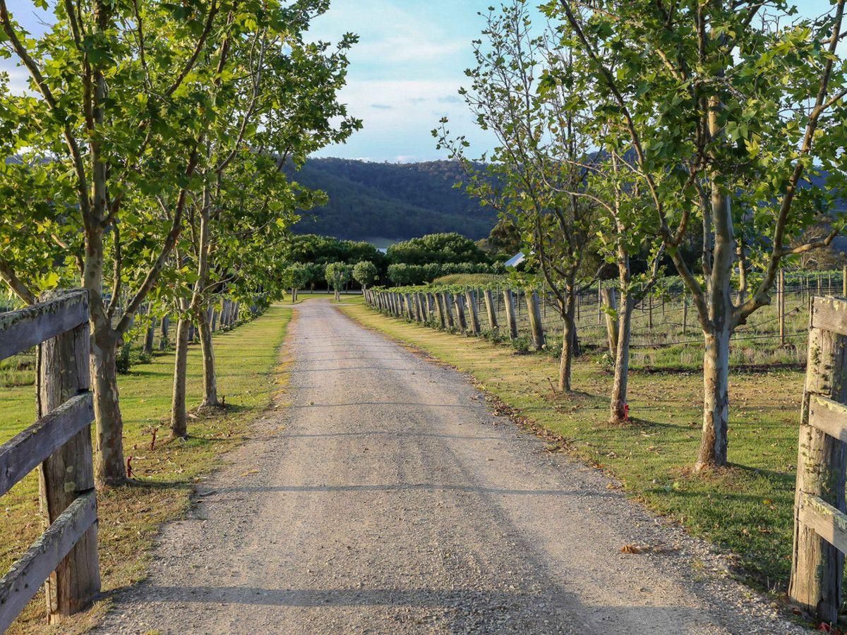712 Wollombi Road, Broke NSW 2330, Image 1