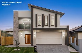 Picture of 17 Lavinia Way, Coomera QLD 4209