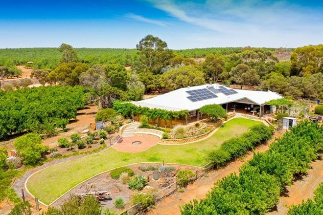 Picture of 36 Drogemuller Road, MOOROOK SOUTH SA 5332