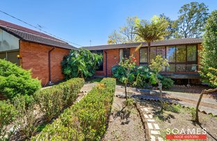 Picture of 34 Amor Street, Hornsby NSW 2077
