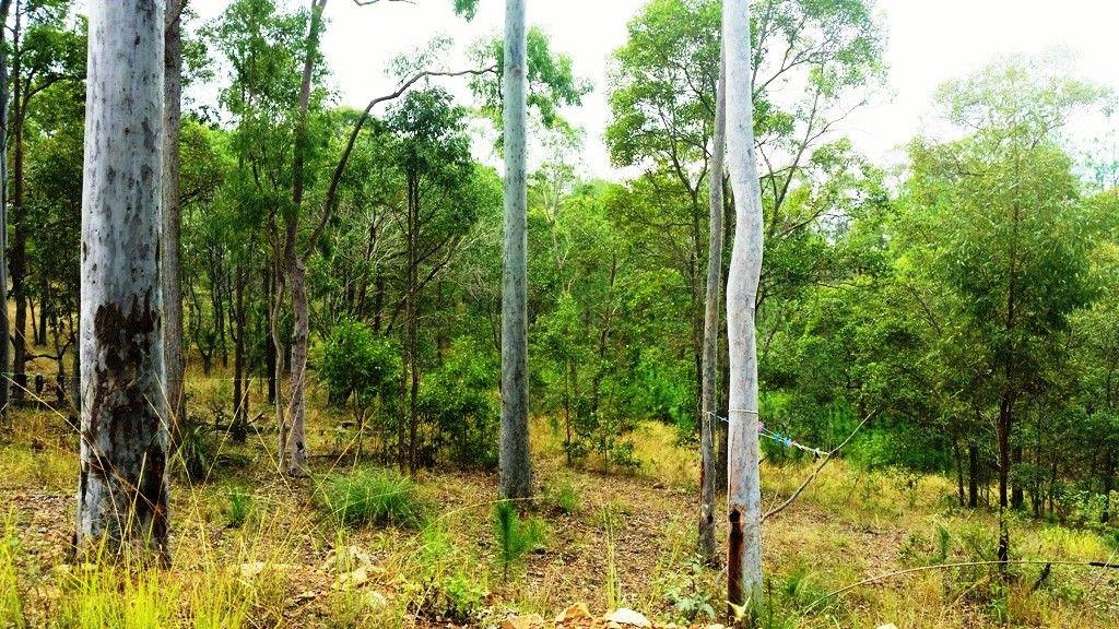 Lot 741 Neerdie Road, Glenwood QLD 4570, Image 2