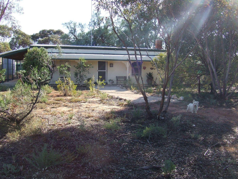 14 Mill Road, Loxton SA 5333, Image 0