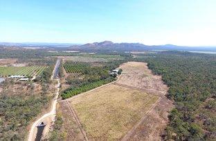 Picture of 224 Springmount Road, Mareeba QLD 4880