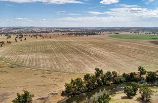 """Picture of """"Cumboogle"""" 6L Benelong Road, Dubbo NSW 2830"""
