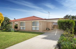Picture of 8 Lavender  Street, Wodonga VIC 3690