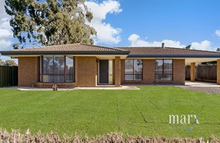 Picture of 29 Neil Avenue, Nuriootpa SA 5355