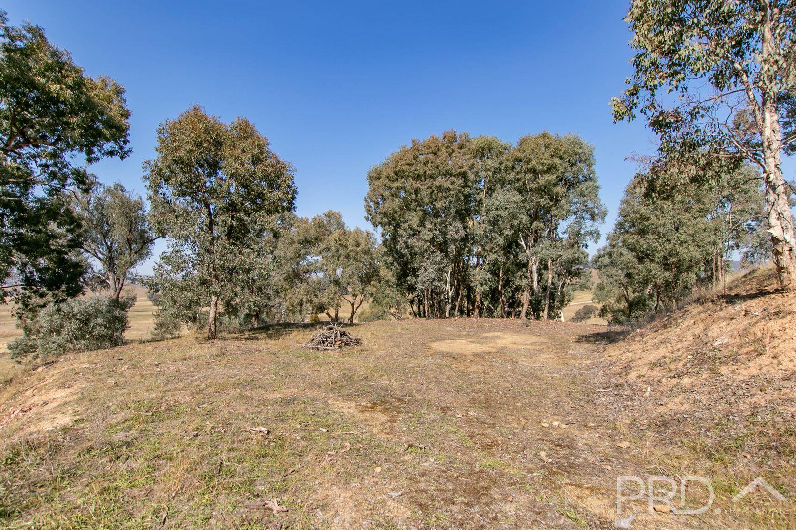 Lots 13 & 16 Wallaby Lane, Gocup NSW 2720, Image 1