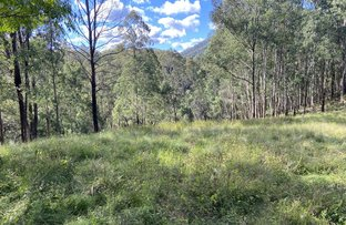 Picture of Lot 109 Carrowbrook Road, Carrowbrook NSW 2330
