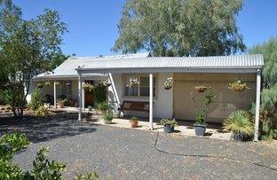 1 Tongo Road, Tilpa NSW 2840