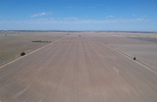 "Picture of . ""SKIRLING PLAINS"", Quandialla, West Wyalong NSW 2671"