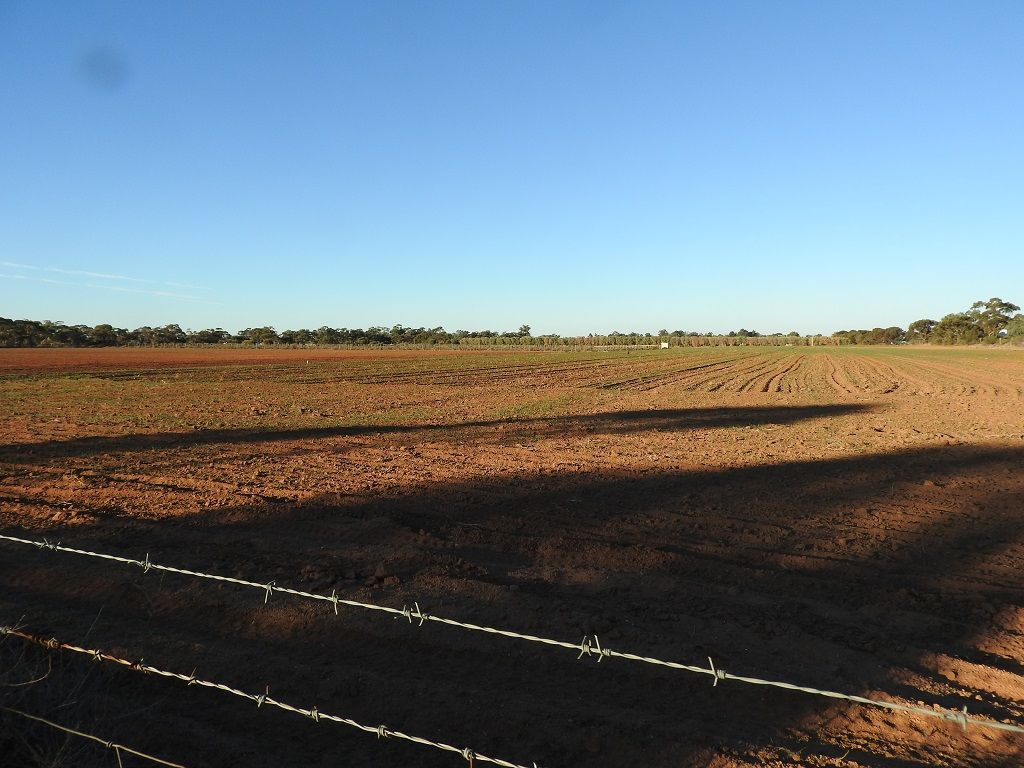 Lot 1 Sturt Highway , Balranald NSW 2715, Image 0