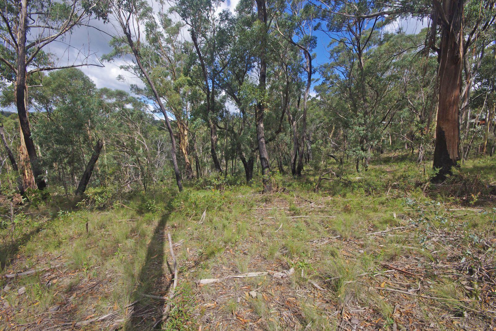 17 Chatsworth Rd, Mount Victoria NSW 2786, Image 2