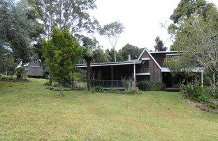 Picture of Johnsens, Dorrigo NSW 2453