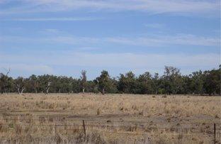 Picture of Lot 3 Wambianna Road, Warren NSW 2824