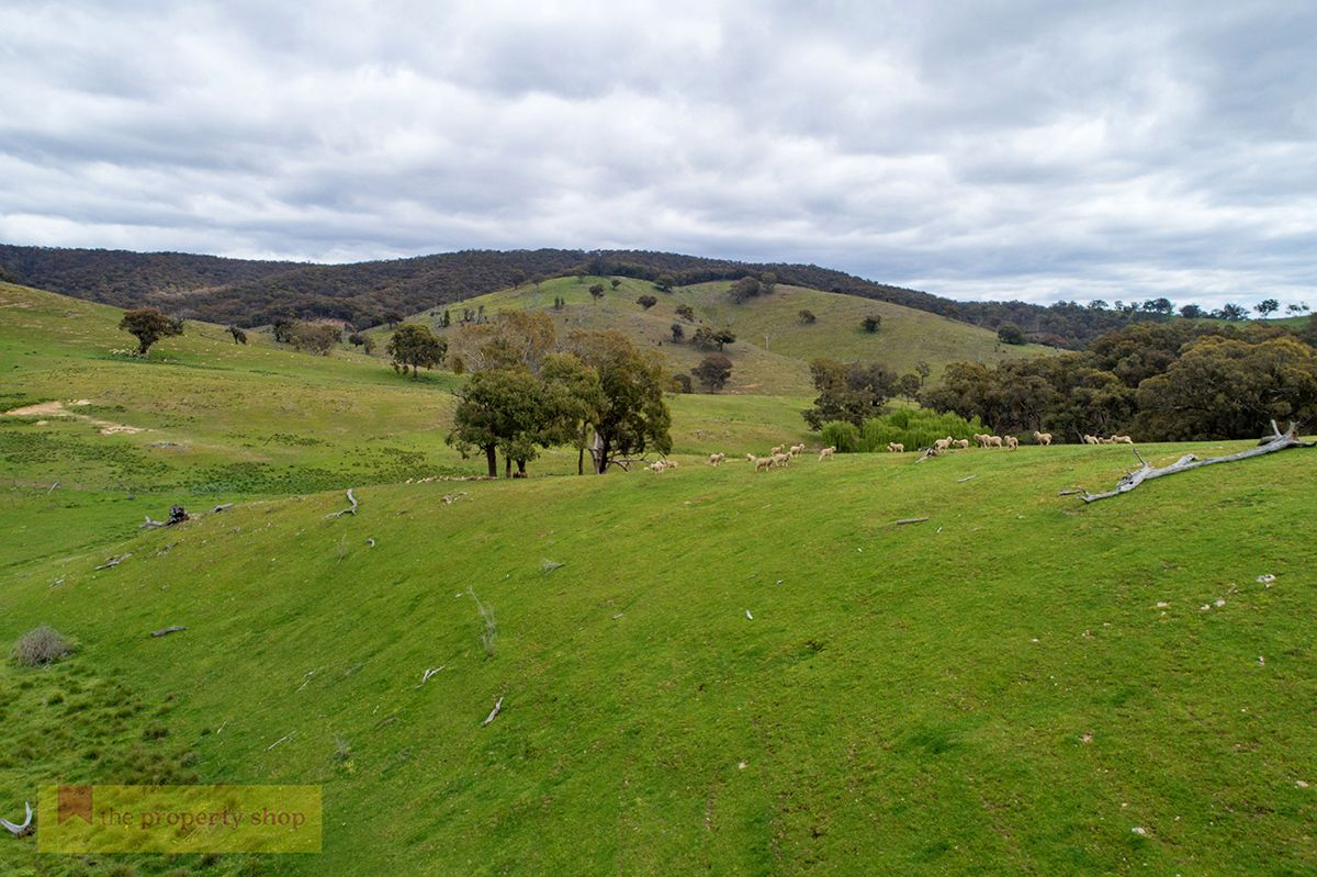 Lot 73 Campbells Creek Road, Mudgee NSW 2850, Image 2