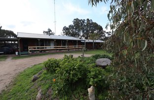 Picture of 381 Warrowitue-Forest Road, Heathcote VIC 3523