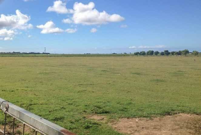 39 Paynes Road, Alloway QLD 4670, Image 0