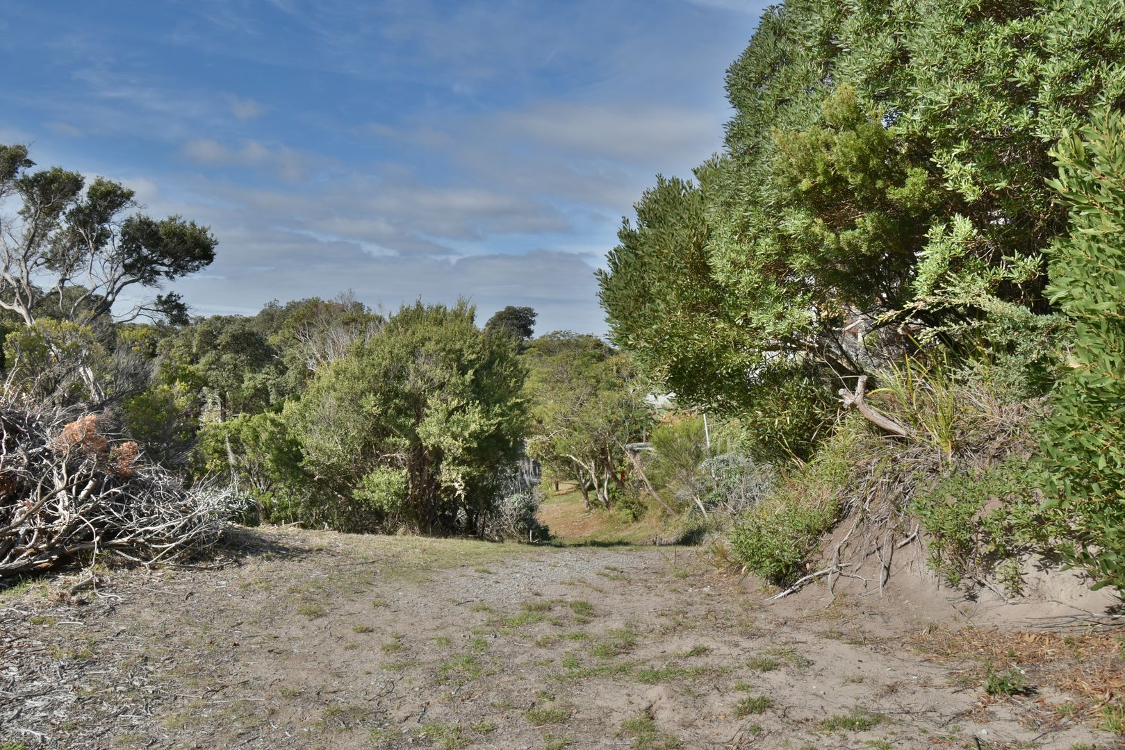 2 BEECH COURT, Sandy Point VIC 3959, Image 1