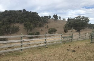 Picture of The Farm 830 Weabonga Road, Weabonga NSW 2340