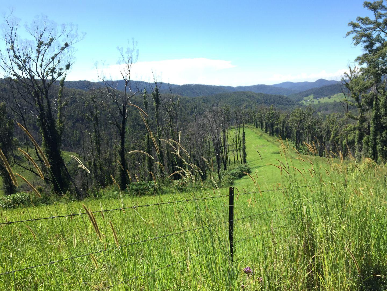 222 Berekovens Road, Upper Pappinbarra NSW 2446, Image 1
