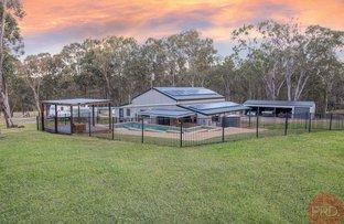 Picture of 21B Pothana Lane, Belford NSW 2335