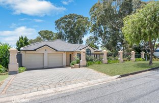 Picture of 55 Sparks Terrace, Rostrevor SA 5073