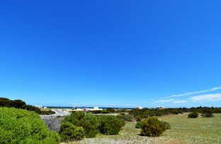 Picture of 10 Peregrine Drive, Marion Bay SA 5575