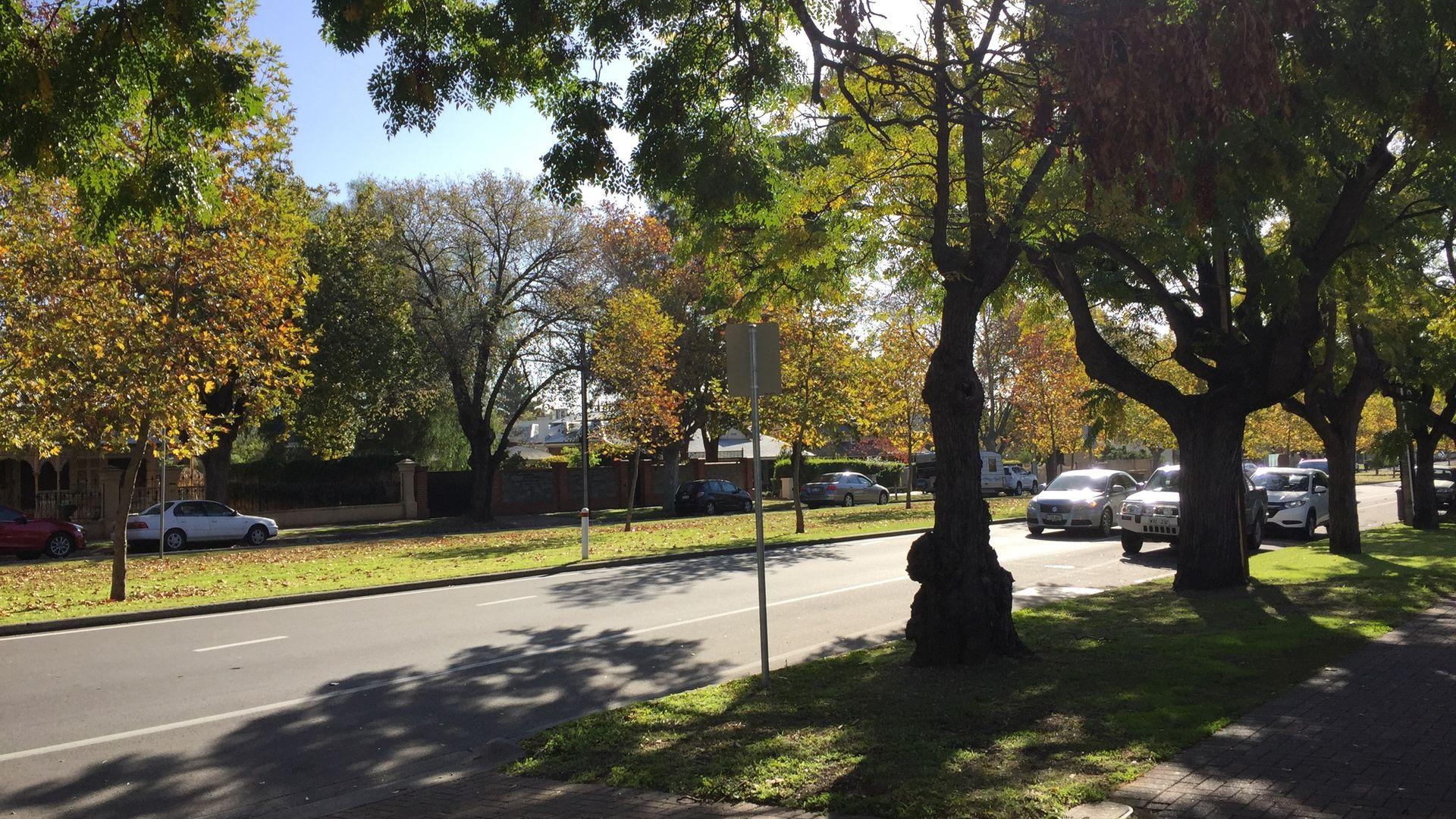 8/128 Osmond Terrace, Norwood SA 5067, Image 9