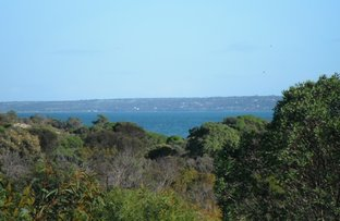 Picture of Lot 36 Collins Cres, Baudin Beach SA 5222
