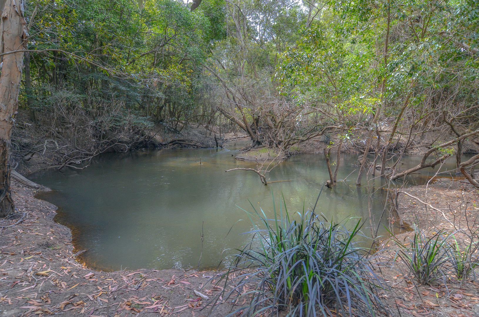 37 Mitchellvale Road, Mount Molloy QLD 4871, Image 2