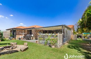 Picture of 6 Meadow Way, Upper Coomera QLD 4209
