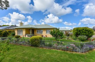 Picture of 9 Matheson Road, Millicent SA 5280