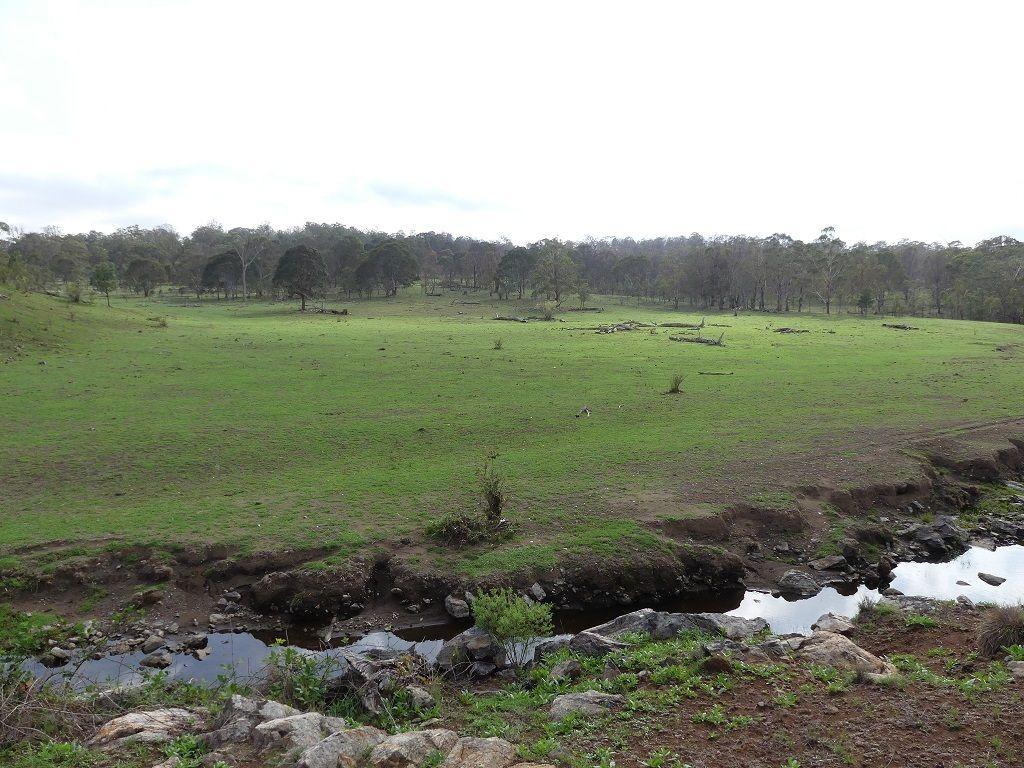 Lot 4 Glentanna Road, Dalveen QLD 4374, Image 2