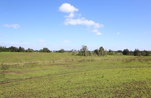 Picture of Lot 1110 Mount Harris Drive, Maitland Vale NSW 2320