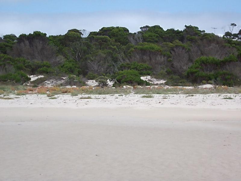 105 De Couedie Dr, Island Beach SA 5222, Image 1