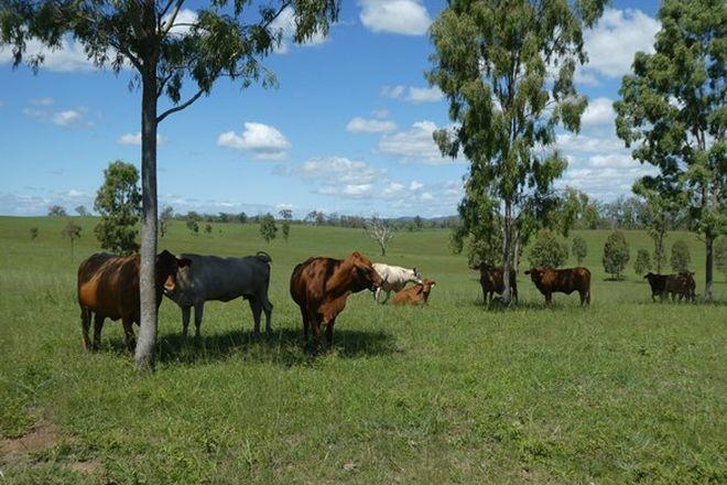 Picture of MINGO QLD 4625