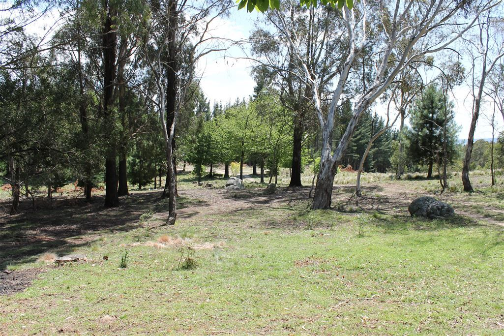 4 off South Forest Way, Kindervale via, Braidwood NSW 2622, Image 2
