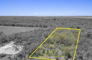 Picture of 90 Palms Springs Drive, Calavos QLD 4670