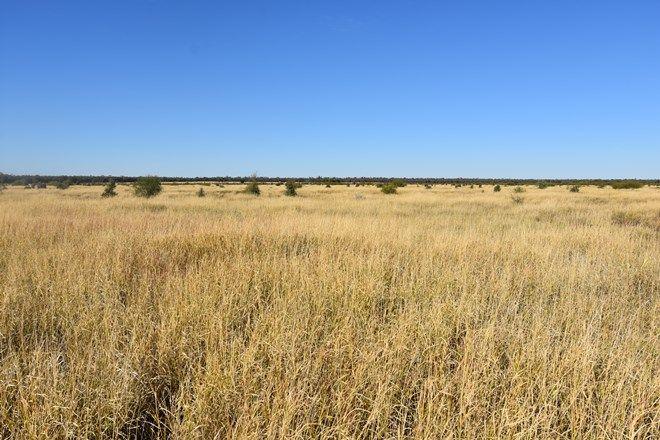 Picture of 40565 Landsborough Highway, BARCALDINE QLD 4725
