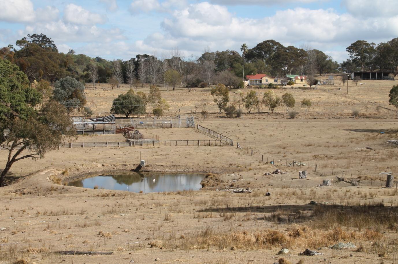 868 Pyes Creek Road, Tenterfield NSW 2372, Image 1