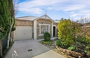 Picture of 26 Alfred Street, Parkside SA 5063