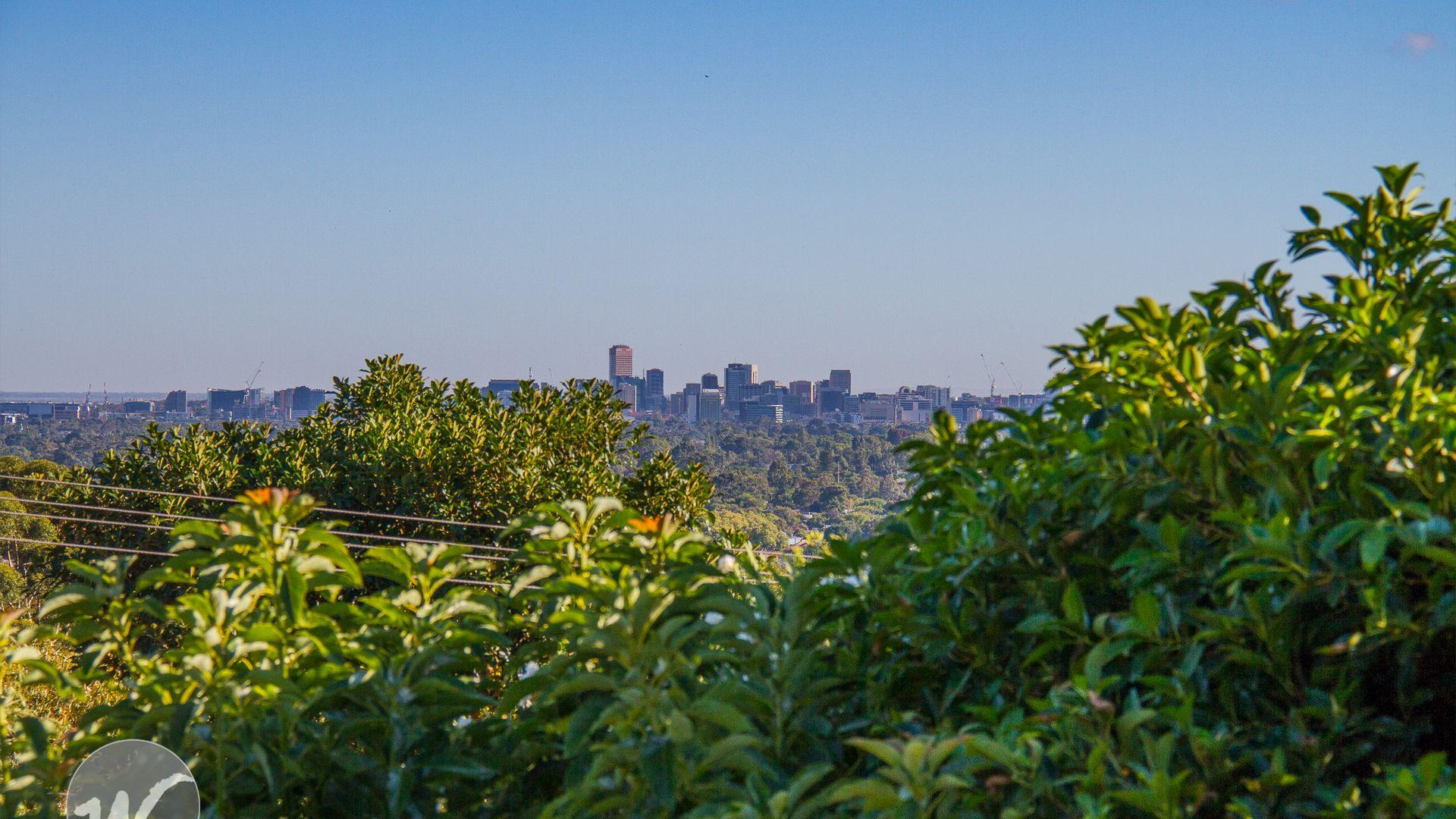 Panorama SA 5041, Image 1