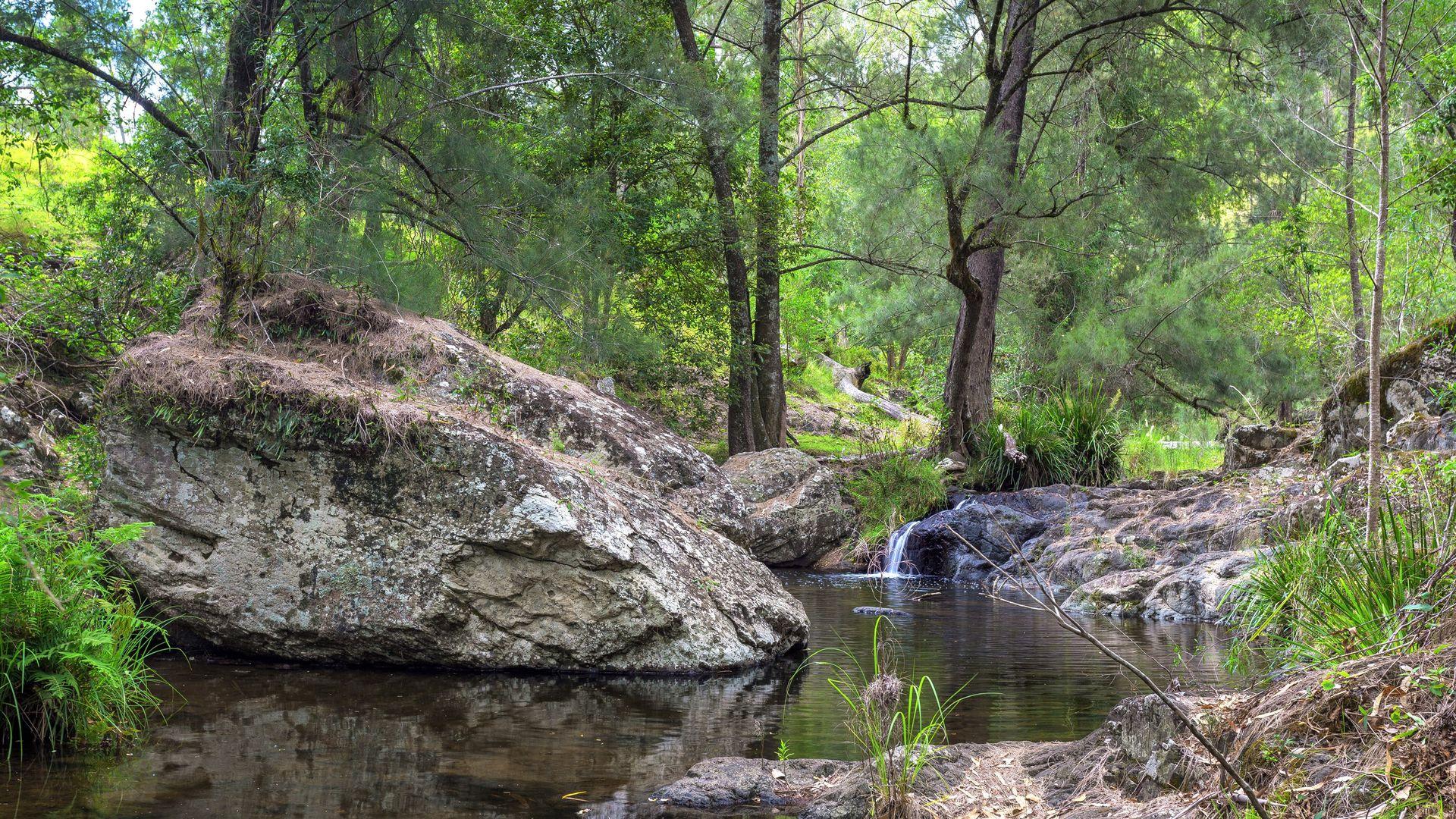 188 Enfield Range Road, Cooplacurripa NSW 2424, Image 1