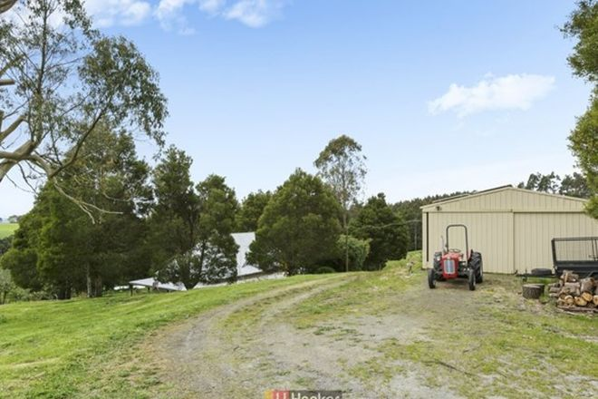 Picture of 45 Southorn Street, BEECH FOREST VIC 3237