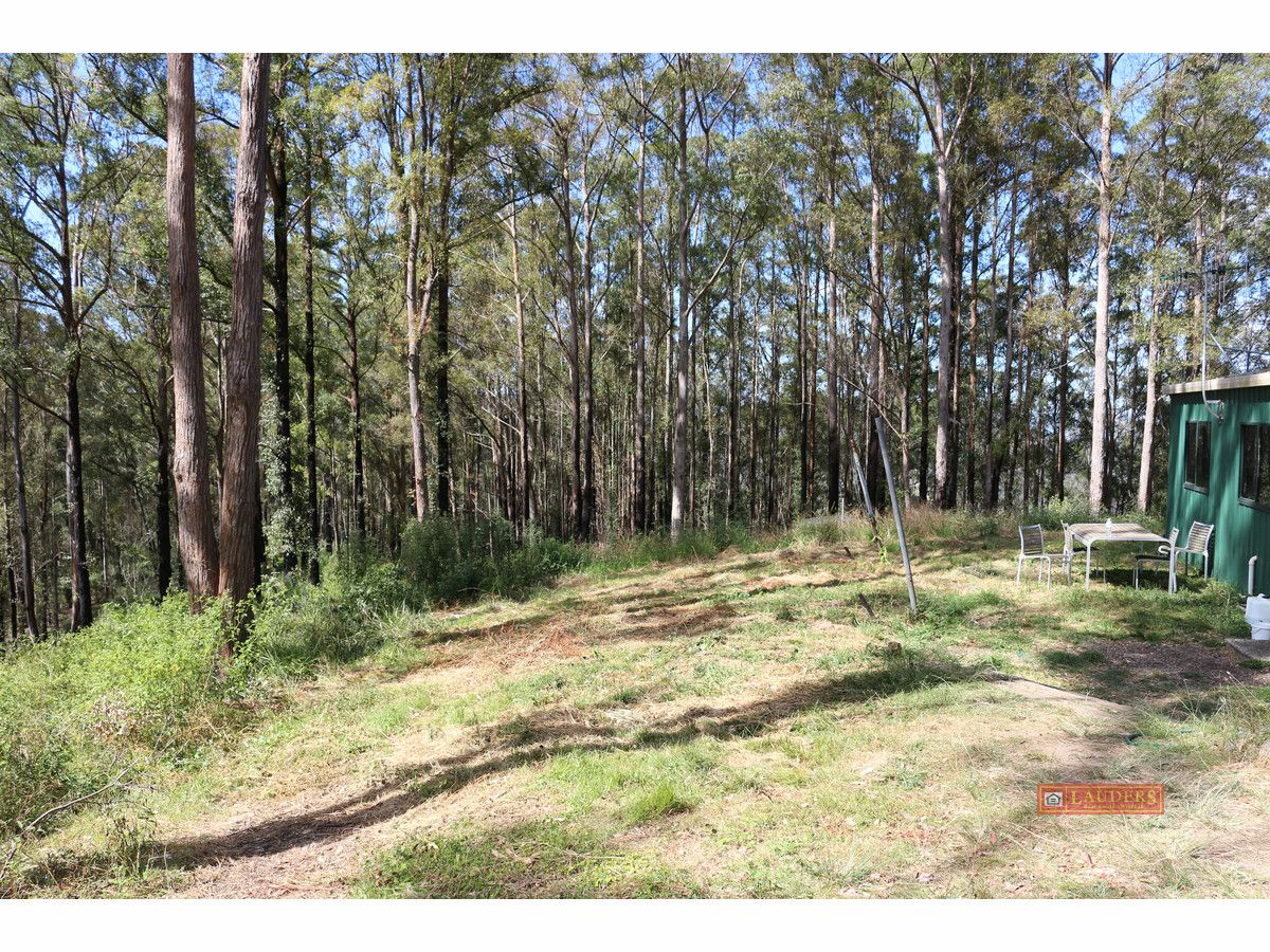 395 Knodingbul Forest Road, Mount George NSW 2424, Image 2